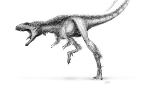 Tiny-T-rex-Raptorex-krieg-001
