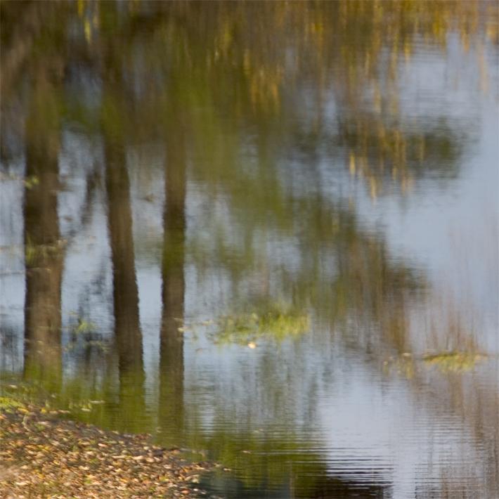 Rouge-et-Noir-Pond-1-75x75