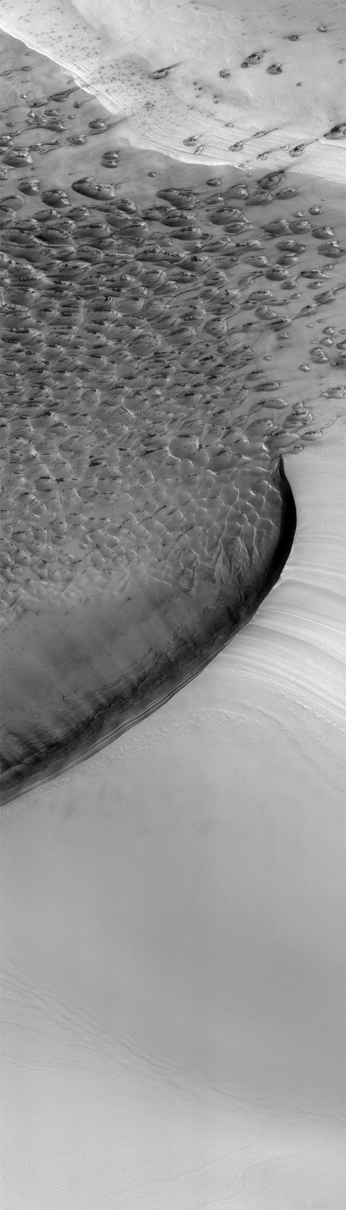 NOMAP-Mars