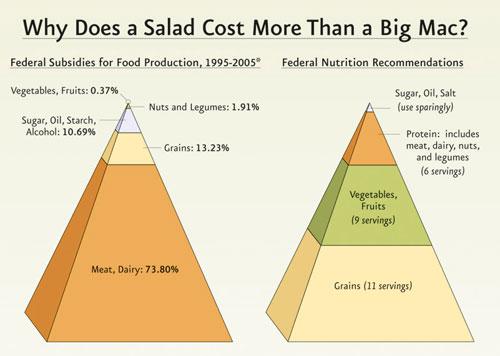 Food and Subsidy Pyramids