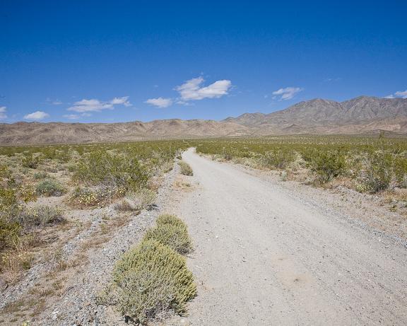 Escape Trail 1-3572